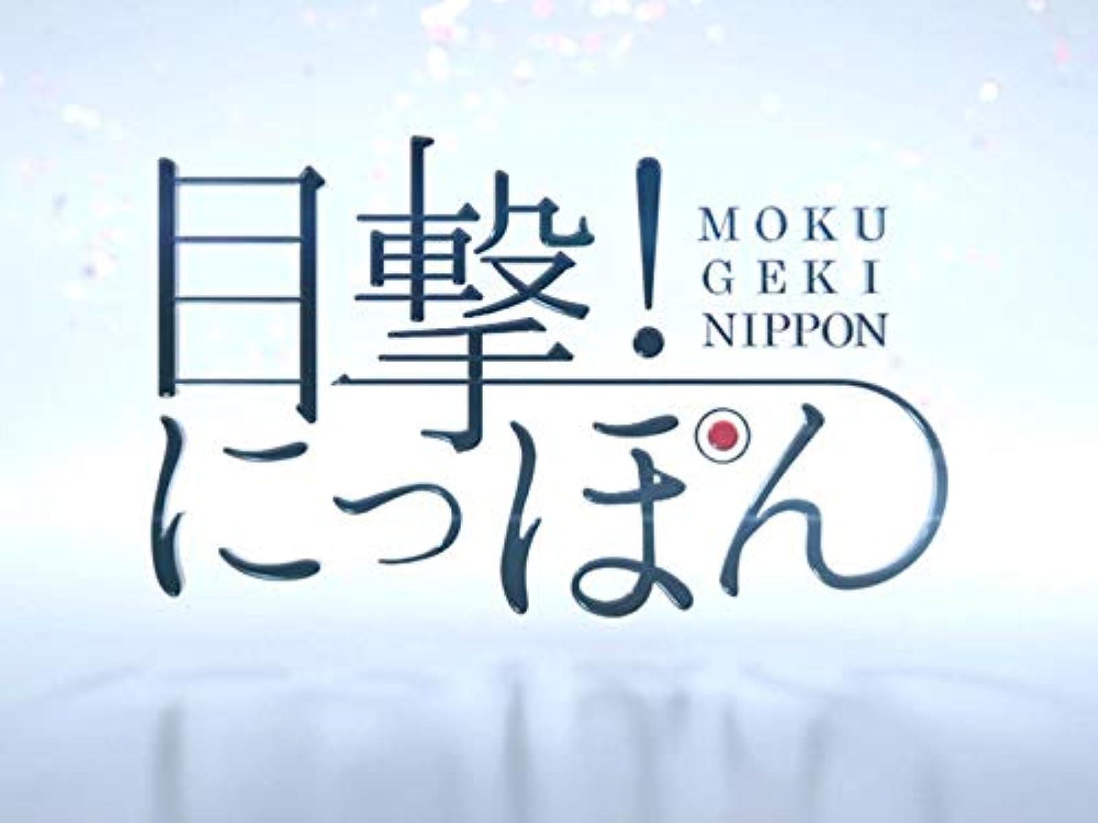 オチアイ ズーム バック NHK番組表・トップページ
