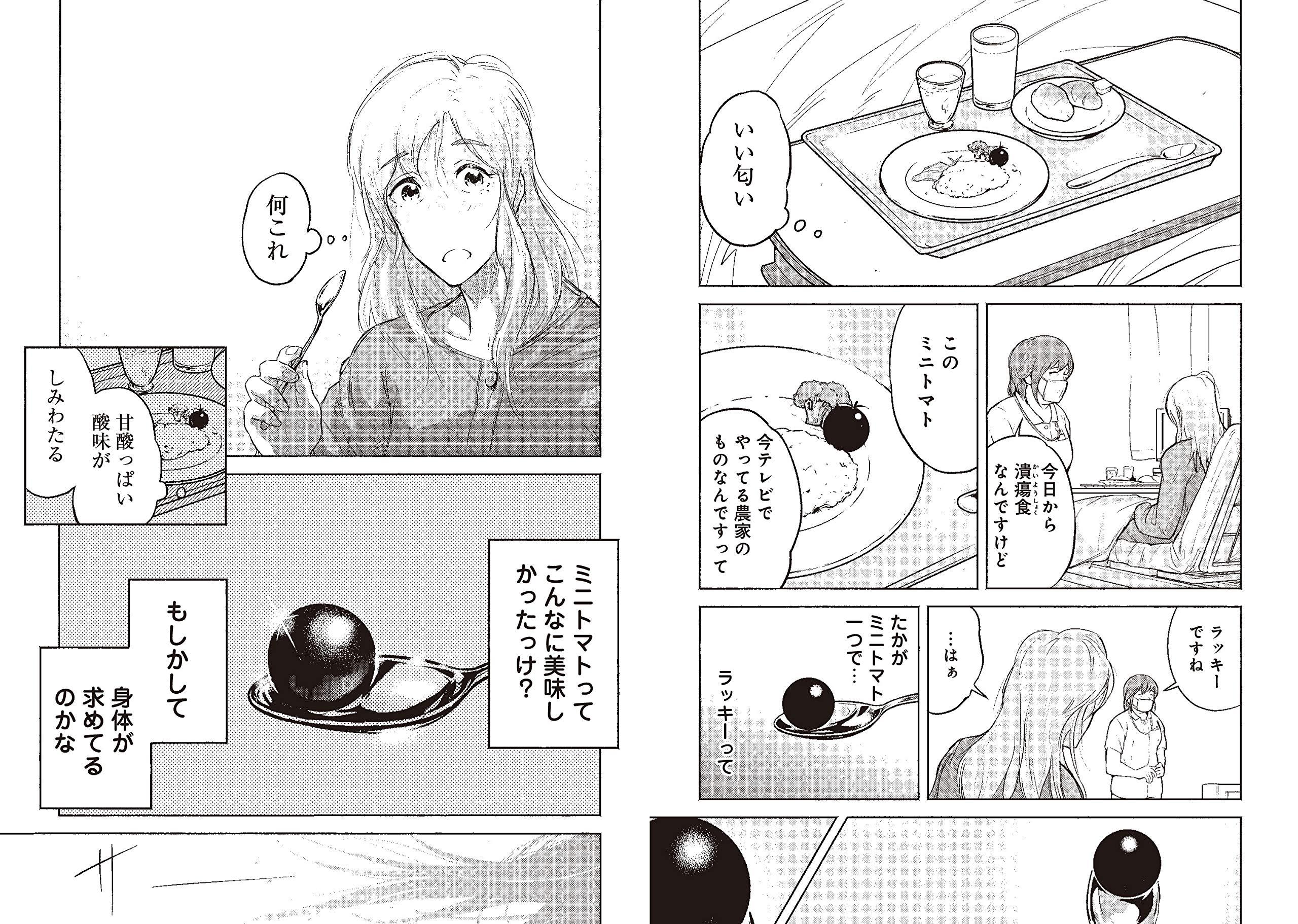 晴れ ばれ みどり 猟銃 (小説)